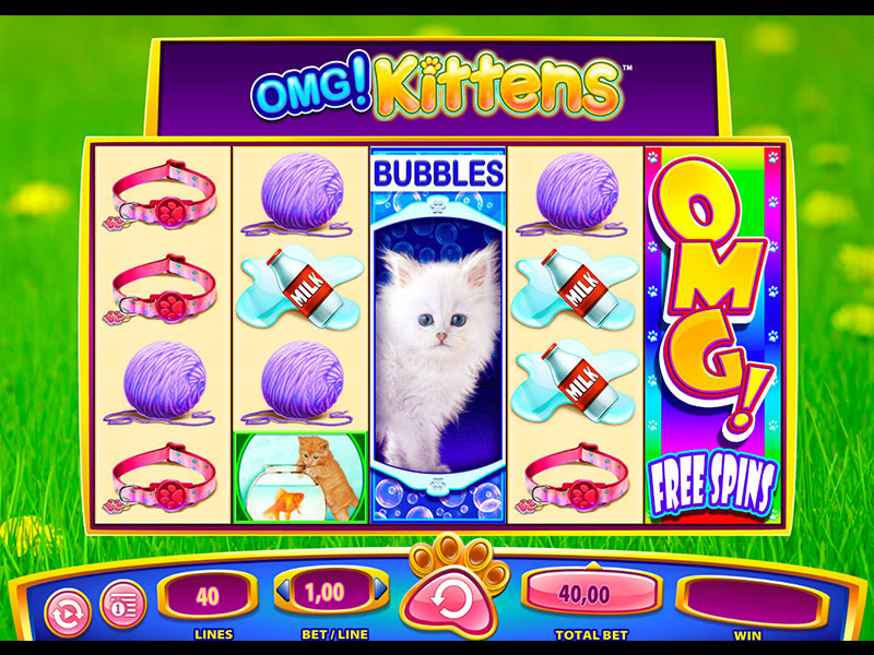 OMG Kittens Slot Game Review