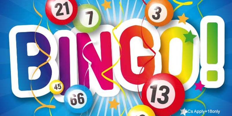 US Online Bingo Free Money Bonuses